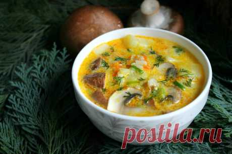 Сырный суп с шампиньонами рецепт с фото пошагово и видео - 1000.menu