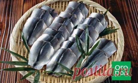 Как замариновать и засолить рыбу: 7 рецептов на все случаи жизни   Статьи (Огород.ru)
