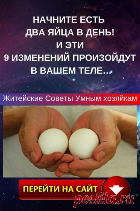 Полезные свойства куриных яиц не раз ставились под сомнение. Как только не клеветали на этот, как теперь доказано, уникальный по своему составу продукт.