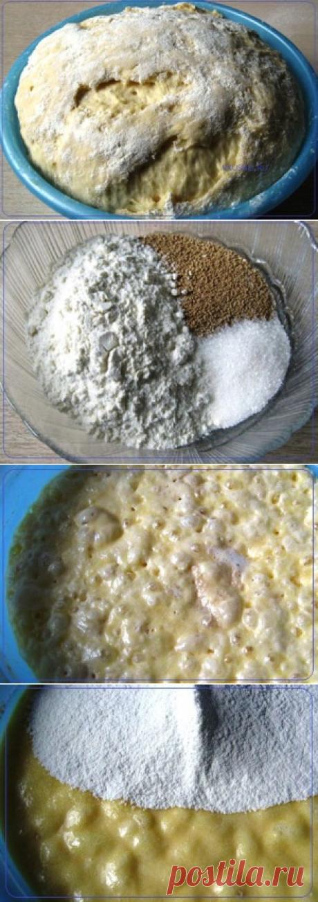 Венское тесто для пасхального кулича | Рецепты вкусно
