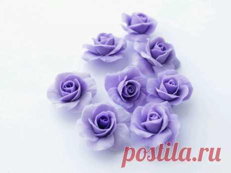 Цветы из полимерной глины (71 фото ) - пошаговый мастер-класс для начинающих