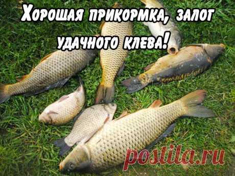 Как я ездил в Крым и сам разговаривал с Крымчанами. Что говорят люди в Крыму....