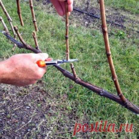 Как сделать Пугало огородное - МирТесен