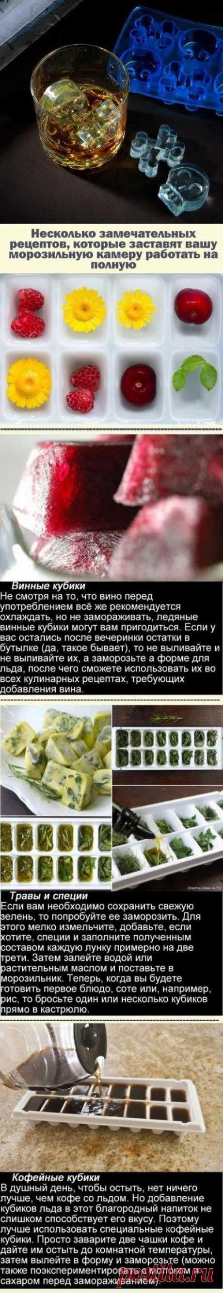Los modos insólitos del uso de las formas para el hielo \/ las Personas caseras