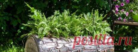 Декоративные кашпо своими руками для сада: мастер-классы из первых рук