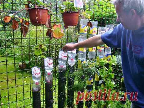 Грядки из пластиковых бутылок своими руками: вертикальные, теплые, фото