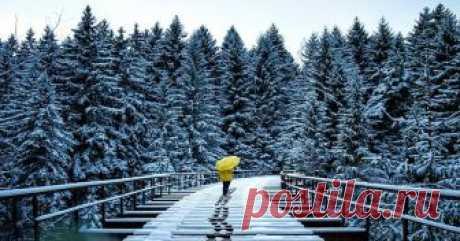 Los paisajes invernales que pacifican del fotógrafo alemán la primavera De calendario ha comenzado ya, pero los fríos severos no dan las posiciones. En el primer día el marzo invitamos a admirar las fotografías mágicas de Europa invernal, ya que en la nieve y el frío hay también ocharo...