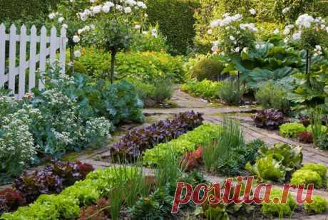 Красивый огород и сад   Если вы являетесь владельцем или построили новенький загородный дом, в нем обязательно должен быть участок где будет располагаться красивый огород и сад ландшафтный дизайн позволит придать ему совре…