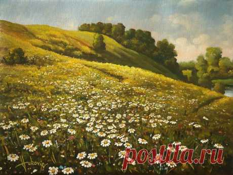 Daisies  Oil on canvas, with a blind frame… 40×50cm Buy the original painting… price 490$