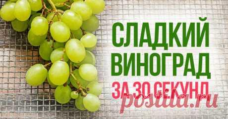 Почему не стоит выбрасывать кислый виноград Способ с микроволновкой срабатывает каждый раз.