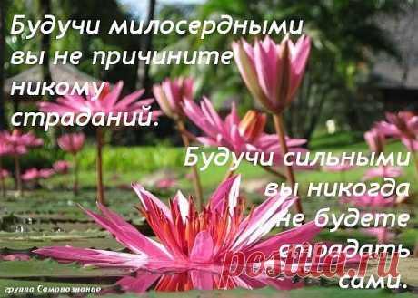 Вроде и осень уже тут, как тут... и депрессии пора бы уже появиться… А на душе... прекрасное настроение ..., ощущение нескончаемого счастья....и красота вокруг...Тепла и вдохновения вам друзья...Пусть ваша осень будет счастливой !!!!...