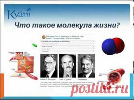 6 мин о продукте KYANI - skype - karitabove