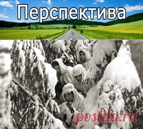 Тайны Финской войны | Pravdoiskatel
