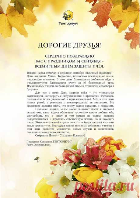 Блог Светланы Голубенко