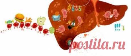 Кожа при заболеваниях печени - высыпания, зуд и другие проявления