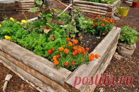11 оригинальных идей для дачи, о которых мечтает любой садовод