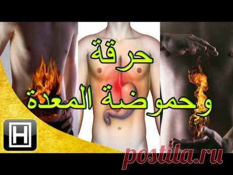 علاج حرقة المعدة والحموضة طبيعيا وبأفضل وأسهل الوصفات - YouTube