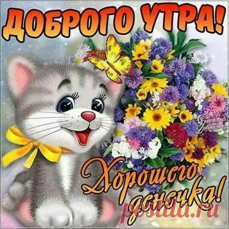 Доброго утра и хорошего денька открытка Утренний веселый позитив гифы