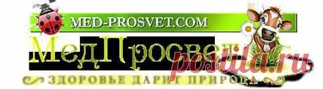 """Маточное молочко: """"королевский"""" продукт - МедПросвет - здоровье дарит природа"""