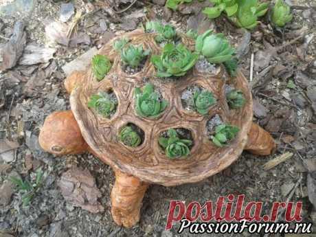(1124) Pinterest - Идеи для дома, сада, огорода. - запись пользователя Olga202202 в сообществе Болталка в категории Интересные идеи для вдохновения | Сад - огород