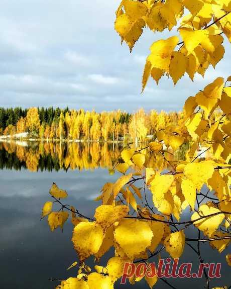 Танцуют листопады...