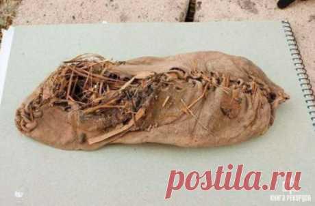 Самая старая обувь в мире, найденная в пещере в Армении. Обувь изготовлена из воловьей кожи и ей примерно 5 500 лет .