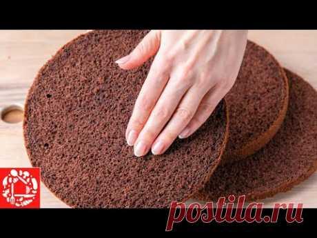 Шоколадный Шифоновый БИСКВИТ: гарантированный результат! Идеальная Основа для торта или Пирог к чаю