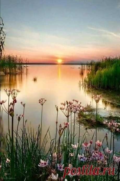 Добрейшего вечера и спокойной ночи всем!!! До завтра!!!