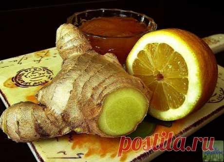 Смесь для имуннитета!  Имбирная смесь с лимонами и медом поможет поддерживать иммунитет, особенно в то время, когда все вокруг начинают болеть простудными заболеваниями.  Ингредиенты:  имбирь (корень) — 120 г, лимоны свежие — 4 шт., мед — 150 мл.  Рецепт приготовления:  1. Корень имбиря очистите от кожуры, затем натрите на терке. Выложите массу в миску. 2. Свежие лимоны очистите от кожуры, затем порежьте кубиками. Выложите лимоны в миску к имбирной массе. 3. Измель...