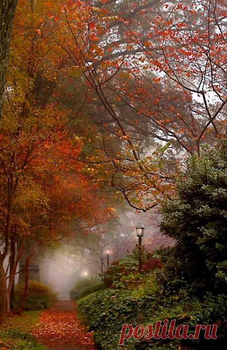 Misty Autumn.   Autumn Cozy  |  Pinterest • Всемирный каталог идей