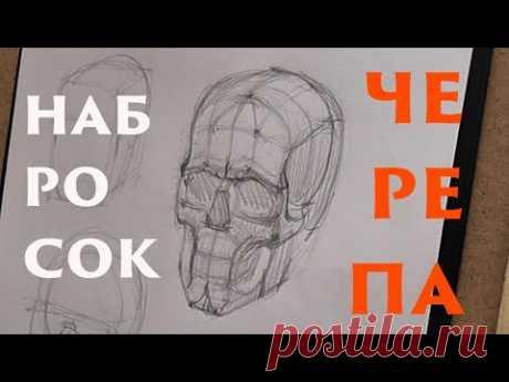 Набросок черепа