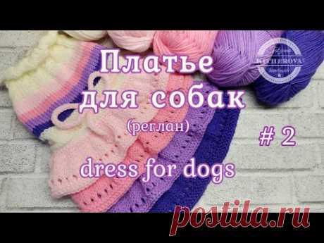 Платье для собак, часть 2, dress for dogs - YouTube