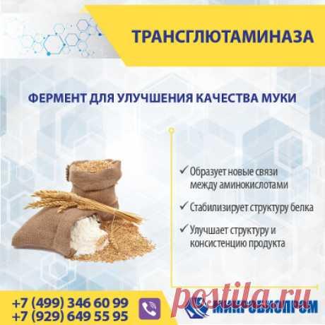 Трансглютаминаза (ТГ) - фермент, органический катализатор химических реакций, связывает белковые молекулы, образуя новые связи между аминокислотами, тем самым стабилизируя структуру белка. Фермент трансглютаминаза используется для укрепления клейковины, что значительно улучшает качество и текстурные свойства хлебобулочных изделий и кондитерской выпечки. Трансглютаминаза оказывает положительное влияние на стабильность теста, задерживает углекислый газ и ароматические вещества.