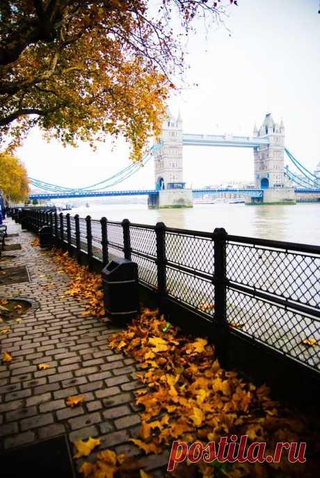 Осенний Лондон. Набережная Темзы. Лондонская набережная Виктории была построена в 1868-1874 гг. Сейчас это одно из любимых мест для ...