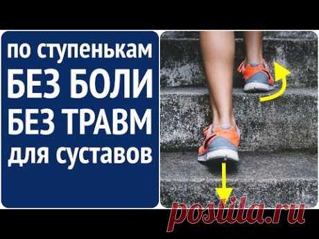 Как правильно подниматься по лестнице? Вверх! К долголетию! Мы возьмём эти ступеньки!