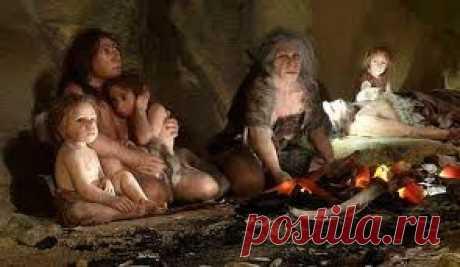 | Неандертальцы и кроманьонцы .Клан пещерного медведя