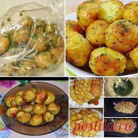 Как приготовить картошку в рукаве   На запах сбегутся все соседи    Ингредиенты:  - 1 кг картофеля (среднего размера) - 2-3 зубка чеснока - 3 ст. ложки растительного масла - зелень (укроп, петрушка) - приправа для картошки - соль/перец по вкусу   Приготовление: 1. Картошку почистим, помоем и обсушим. если очень крупная, то лучше порезать и потыкать вилкои.  2. Чеснок давим. 3. Зелень промываем, просушиваем и мелко режем. 4. В отдельнои посуде смешиваем растительное масло, ...