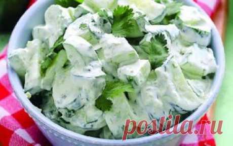Минус 7 кг за 14 дней реально! Секрет кроется в специальном и очень вкусном салате! Очень вкусная и эффективная диета! Я на ней уже скинула 4 килограмма!