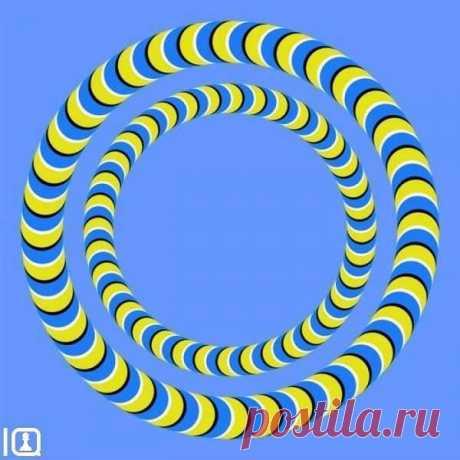 Эту иллюзию изобрел японский психиатр Акиоши Китаока. Он утверждает, что иллюзия неподвижна для спокойных, уравновешенных и отдохнувших людей. Если же иллюзия активно движется, то вам нужен отдых и сон в течение 8 часов. Ну, а если же иллюзия очень быстро движется, то вам срочно нужен… отдых в больнице.  Итак, проверяем себя, и если что – начинаем отдыхать!