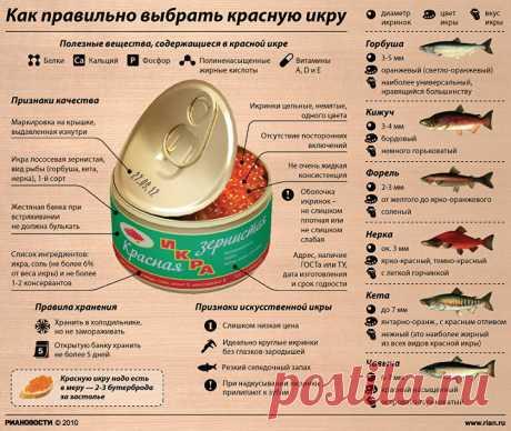 Como escoger correctamente el caviar rojo