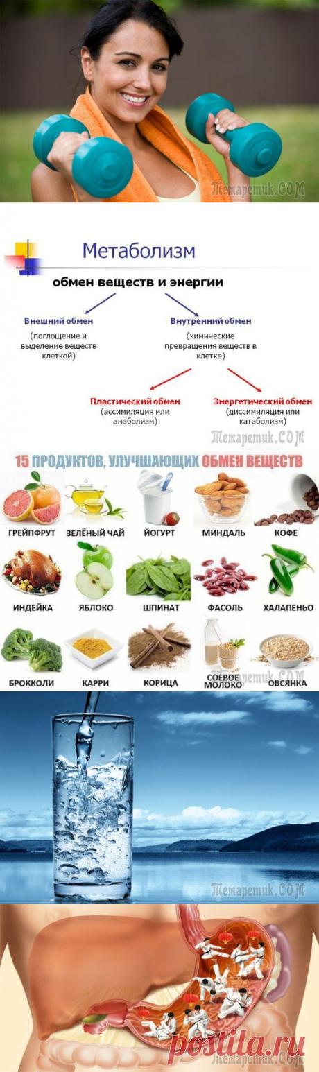 Особенности и способы ускорения метаболизма