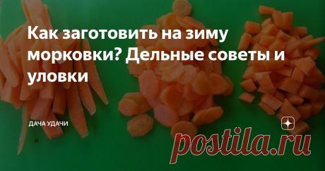 Как заготовить на зиму морковки? Дельные советы и уловки Тяжело представить себе наш стол без моркови! Как только мы ее не используем! Всем известна польза этого солнечного овоща. Морковь незаменима для нормализации пищеварения и профилактики простуды. Даже снижает риск онкологии и раннего старения кожи. В моркови содержатся почти все вещества, необходимые нашему организму. Вот поэтому вопроса  стоит или не стоит заготавливать морковь? - нет. Вопрос в