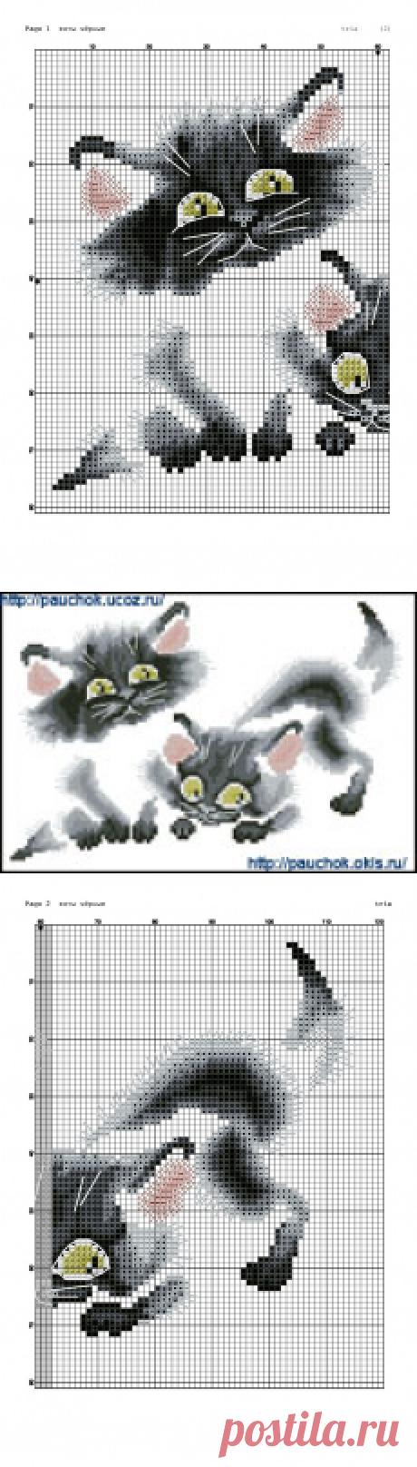 Вышивка.Кошки необычные...