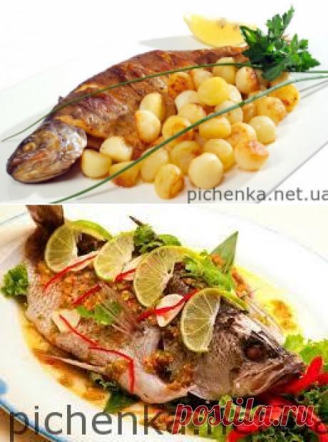 Вкуснейшие рыбные блюда    Вкусные рецепты
