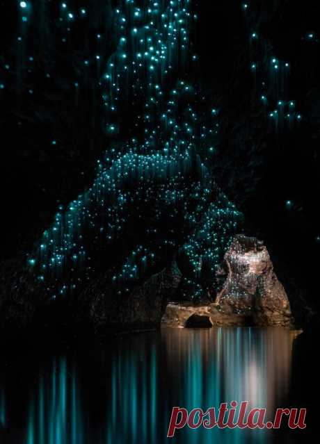 Пещеры Вайтомо – звездное небо из светлячков;) Фотограф Шон Джефферс (Shaun Jeffers) — Фотоискусство