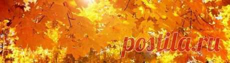 Фартуки для кухни. Скинали желтые листья осень, на сайте www.skinali-plus.com