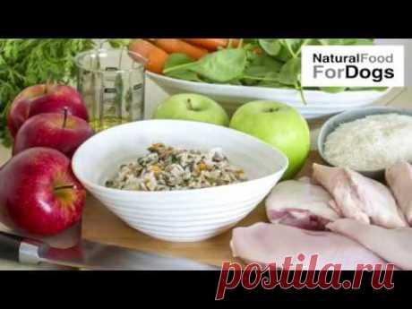 Рецепты для собак гурманов на натуральном питании | Натуральные рецепты еды для собак | Мясо собакам