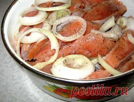 Домашнее соление рыбы и селедки