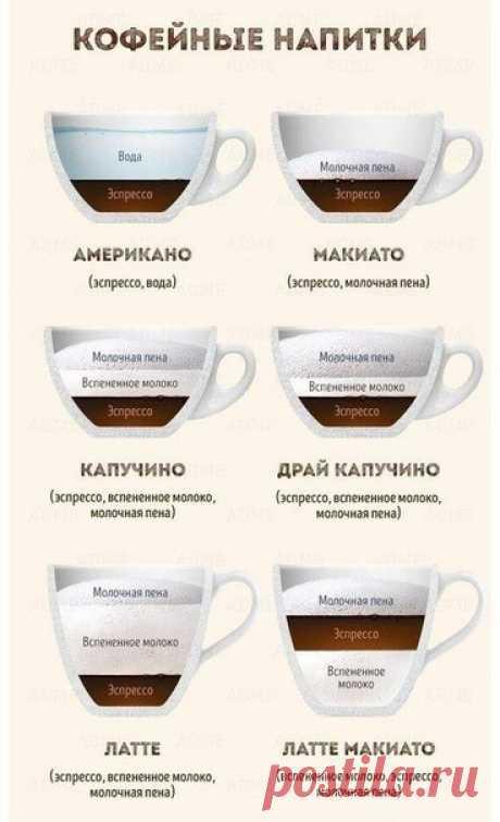 Полезная информация для тех, кто предпочитает по утрам чашечку ароматного кофе 😍 А что любите вы? Чай или кофе? 🌿