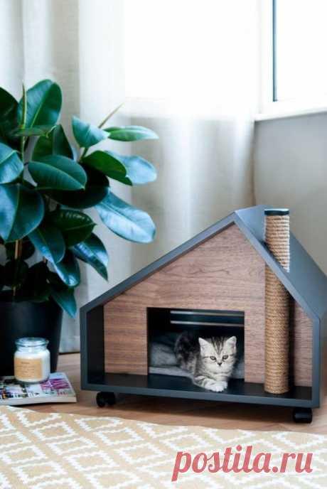 Эффектные домики для домашних животных - Вторая улица - медиаплатформа МирТесен